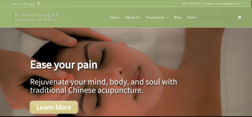dr sontag acupuncture and wellness website